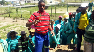 Horticultural_TRaining_Environmental_Training_Eastern_Cape_South_Africa_2