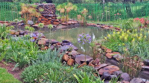 Landscape-Architecture-Eastern-Cape-South-Africa-3