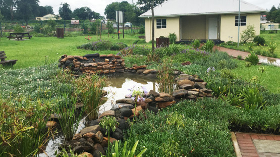 Landscaping_Heroes_Park_Idutywa_Eastern_Cape_South_Africa_2