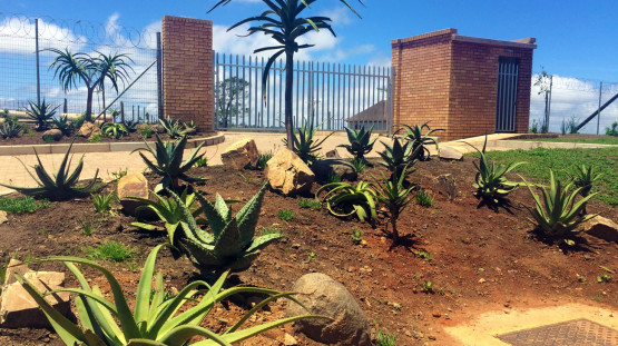 Landscaping_Ntlaza_Eastern_Cape_South_Africa_2