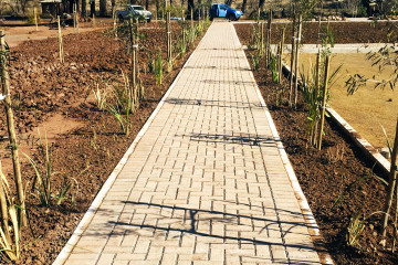 Burgersdorp_Eco_Parke_South_Africa_3